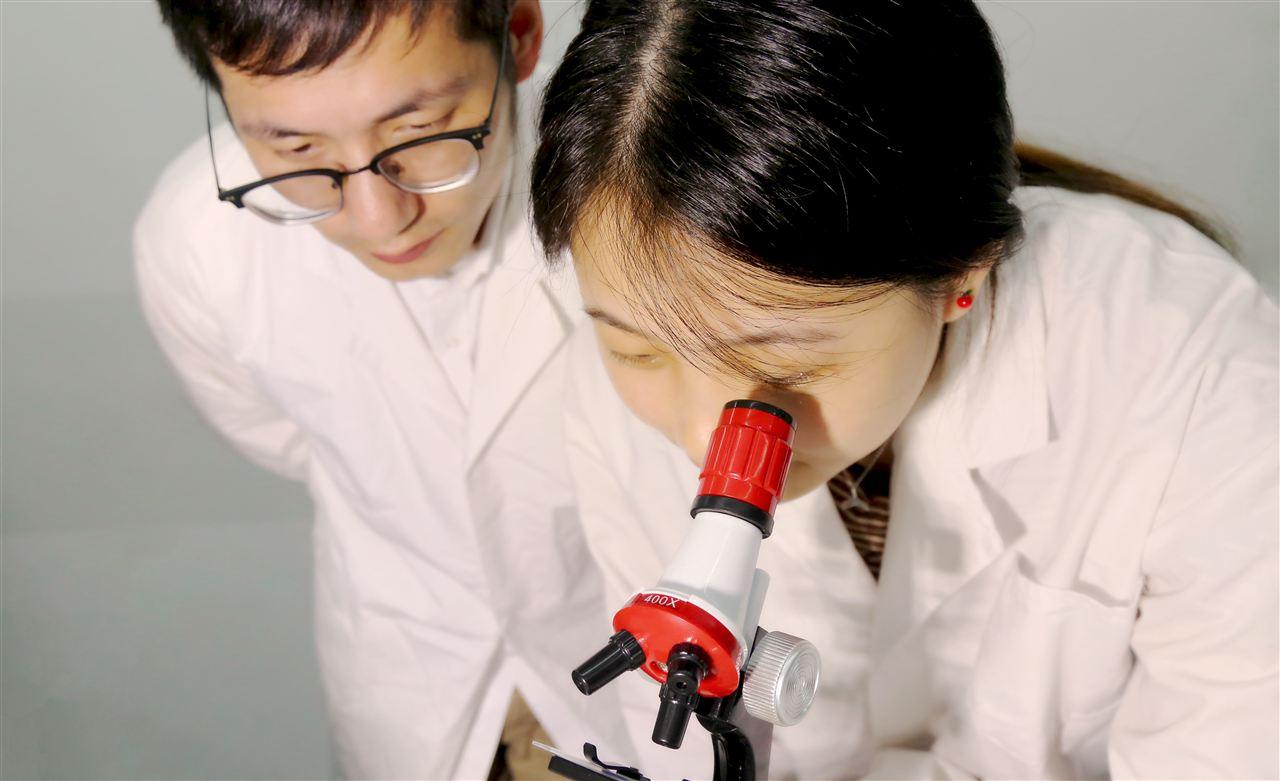 北大采购激光共聚焦显微镜 预算280万